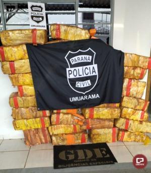 Polícia Civil de Umuarama apreende quase meia tonelada de maconha e prende uma pessoa em flagrante