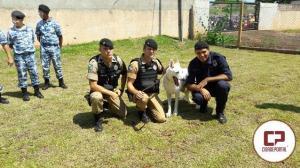 Guarda Mirim de Altônia realiza visita ao quartel do 25°BPM em Umuarama