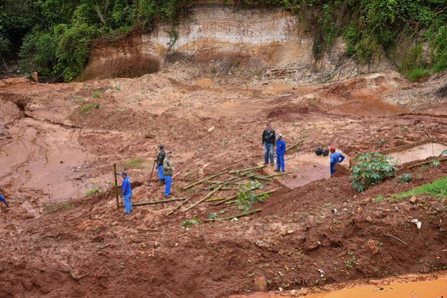 Dia da Árvore terá plantio de mudas em área degradada recuperada pela Prefeitura de Umuarama
