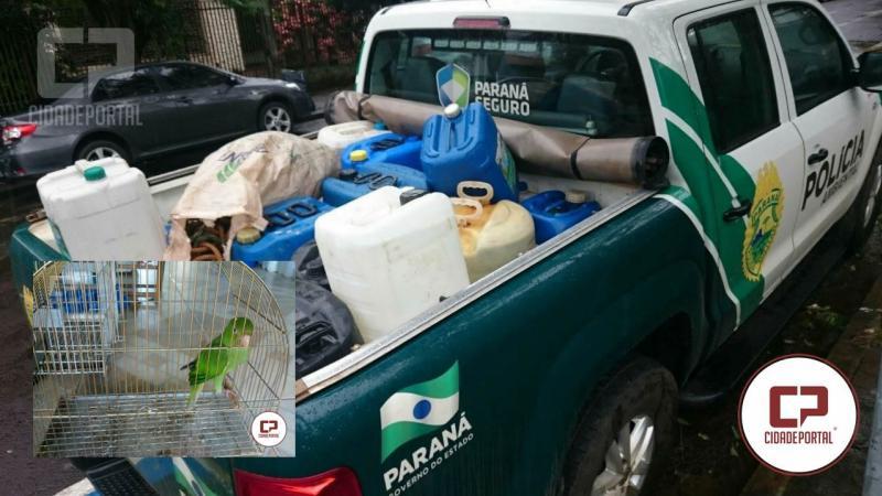 Polícia Ambiental de Umuarama apreende ave mantida em cativeiro e combustível armazenado sem autorização