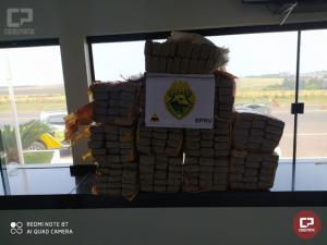 PRE de Iporã e ROTAM da 3ª CIA prendem uma pessoa em flagrante com mais de 240 kg de maconha