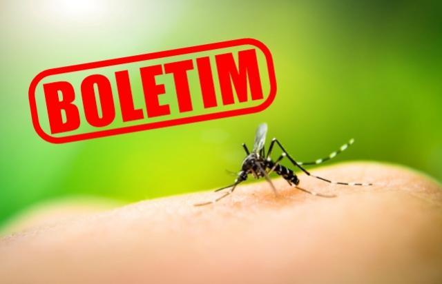 Casos de Dengue se estabilizam em Umuarama segundo boletim desta sexta-feira, 26