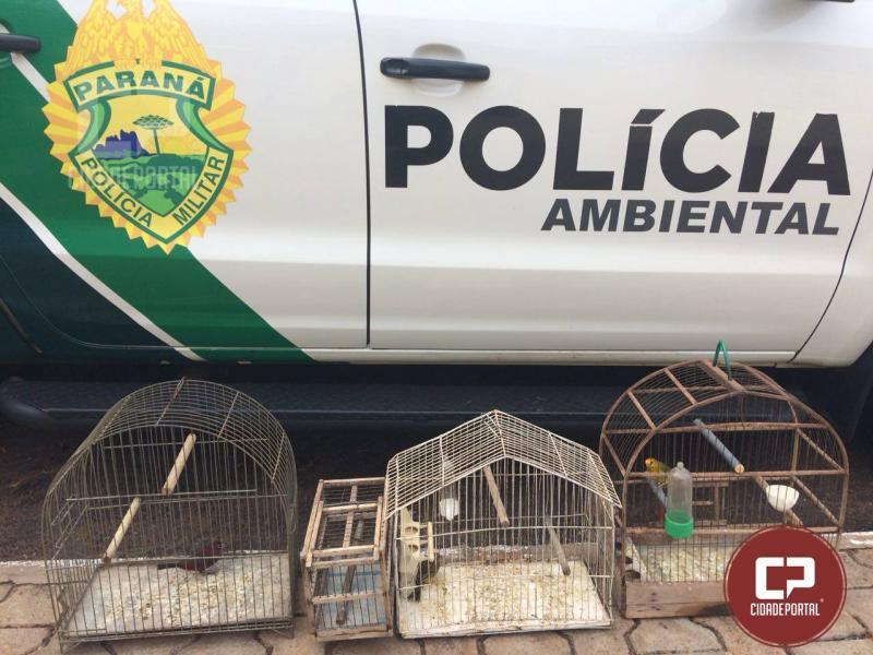 Polícia Ambiental de Umuarama resgata aves recém capturadas em Pérola