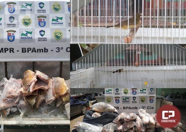 Operação cumprimento de mandados e fiscalização pré abertura da pesca em Umuarama
