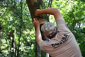 Projeto Uma Muda Muda o Mundo é impulsionado no Bairro Saudável em Umuarama