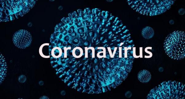 Boletim Oficial sobre Coronavírus da Prefeitura de Umuarama desta segunda-feira, 30