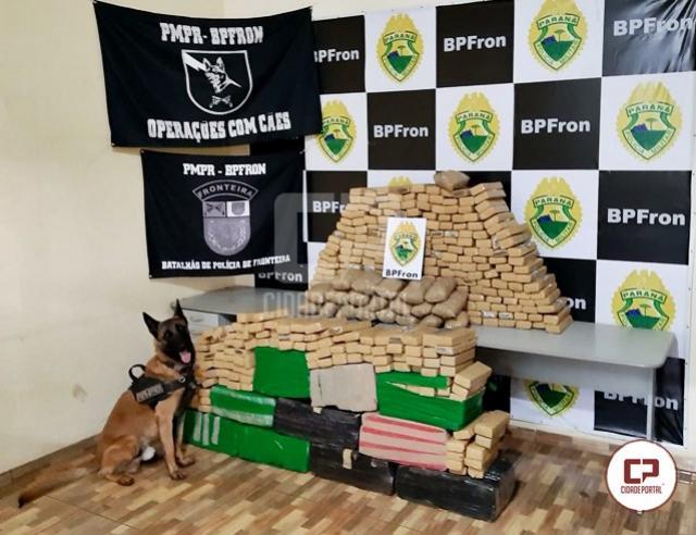 BPFron apreende mais de 400 kg de maconha durante Operação Hórus em Guaíra