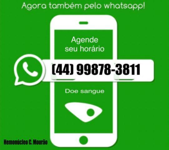 Hemonúcleo de Campo Mourão agora conta com Whatsapp! Agende seu horário!