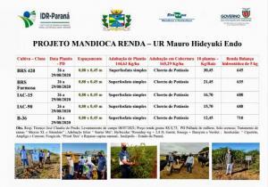 A importância do Setor Mandioqueiro na economia do município de Janiópolis