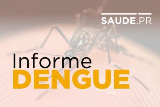 Paraná soma 1.192 casos de dengue registrados a partir de agosto