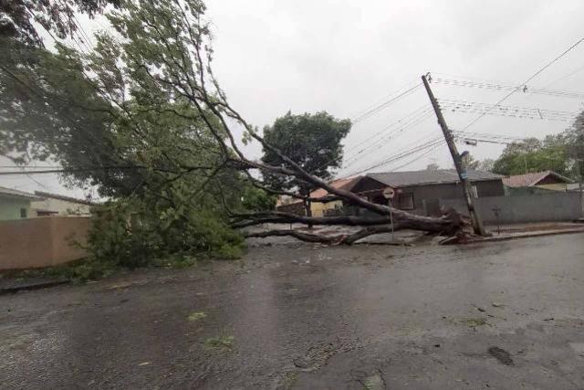 Copel e Sanepar trabalham para restabelecer luz e água em municípios atingidos por temporal