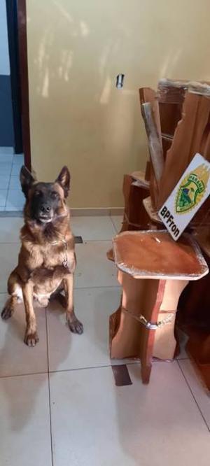 BPFron apreende maconha escondida em bancos de madeira na cidade de Cascavel