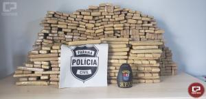 Polícia Civil e Militar apreendem 430 kg de maconha em Cascavel