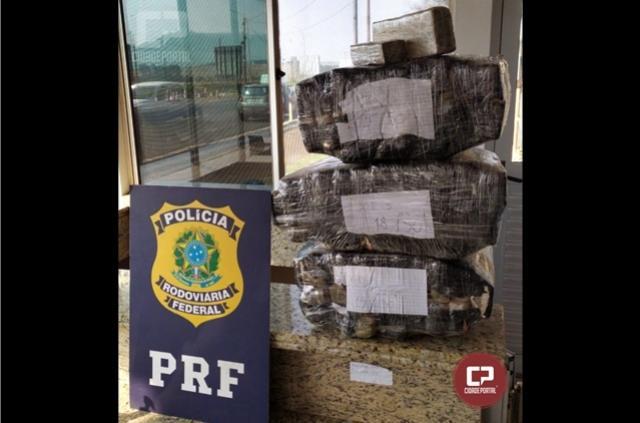 PRF encontra quase 50 kg de maconha em veículo na cidade de Santa Terezinha de Itaipu