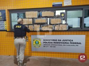 PRF apreende mais de 160 quilos de maconha em Cascavel