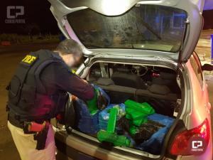 PRF apreende 62 kg de maconha em Santa Terezinha de Itaipu