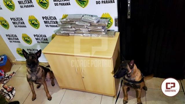 BPFron e BOPE apreendem 12 kg de maconha em Cascavel