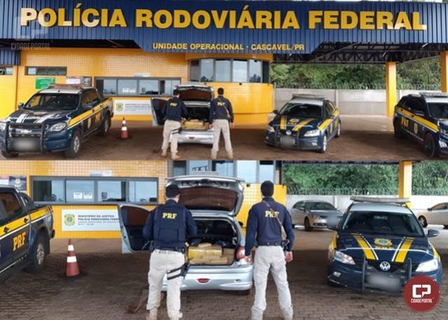 PRF apreende mais de 150 kg de maconha na região de Cascavel