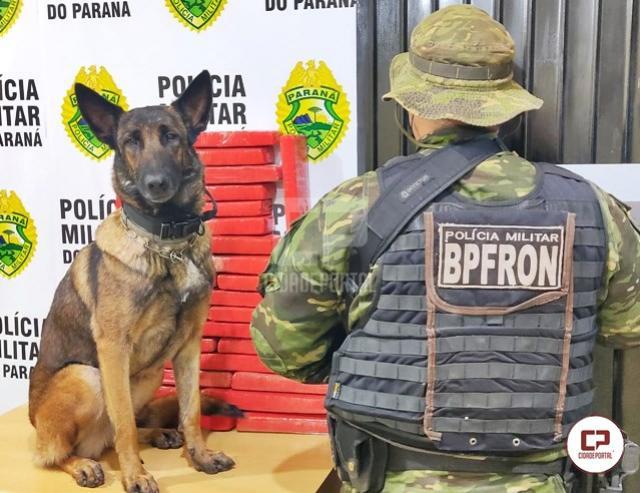 BPFRON apreende drogas com passageiro de ônibus em Cascavel