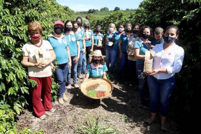 Projeto Mulheres do Café valoriza produtoras e garante fama internacional ao Norte Pioneiro