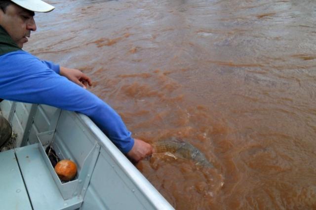 Pesca de espécies nativas está liberada a partir deste sábado, 29