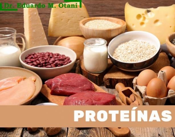 Ingerir proteínas é essencial na dieta, mas o excesso pode causar riscos à saúde