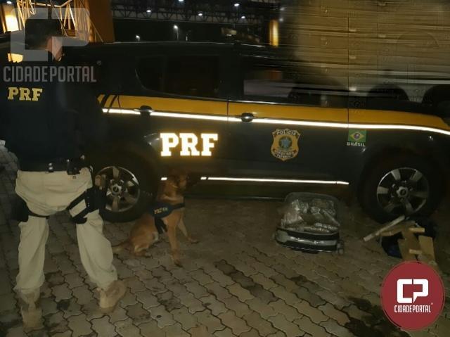 PRF apreende mais de 15 quilos de droga em Cascavel com a ajuda de cães farejadores