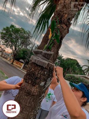 Interact Club de Goioerê tem trabalhado duro pela comunidade de Goioerê