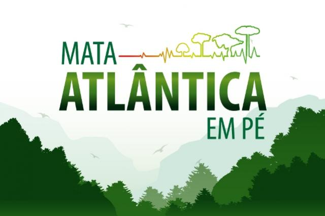 Seminário discute resultados da Operação Nacional Mata Atlântica em Pé e prepara nova ação conjunta do Ministério Público