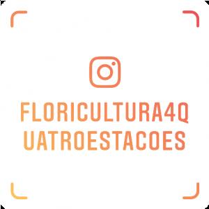 Floricultora Quatro Estações está no instagram