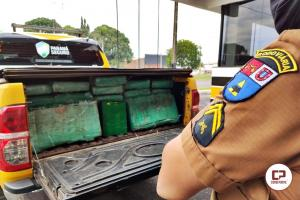 Polícia Rodoviária Estadual de Cianorte retira de circulação mais 300 KG de drogas