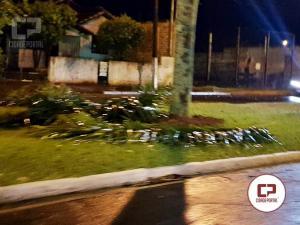 Chuva e ventos da madrugada deixam ruas e avenidas de Goioerê com galhos e folhas espalhadas