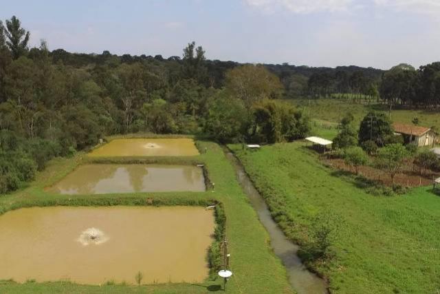 Piscicultura faz parte da formação de alunos da Casa Familiar Rural de São Mateus do Sul