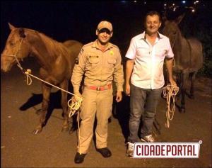 Prefeito de Goioerê Pedro Coelho ajuda Corpo de Bombeiros a capturar cavalos soltos em via pública