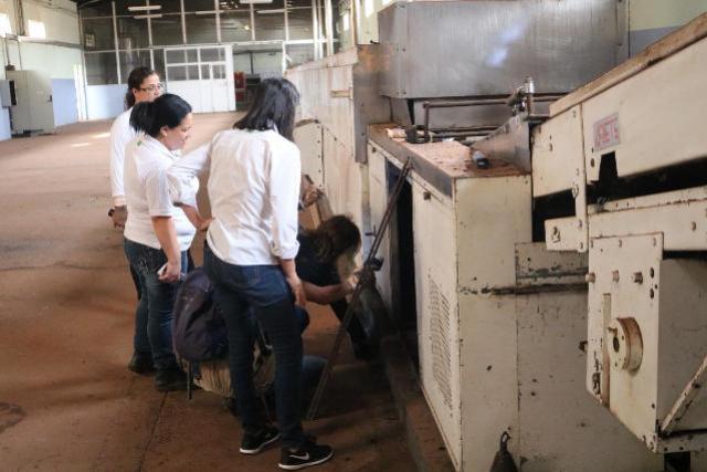 Justiça autoriza busca de escorpiões em fábrica desativada em Goioerê
