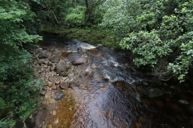 Grande Reserva Mata Atlântica vai potencializar Antonina e Morretes