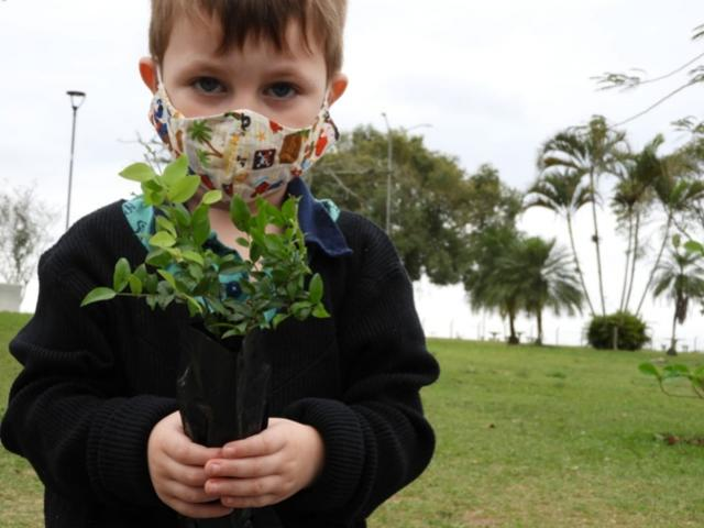 Plantio de mudas nativas em todo o Estado marca o Dia da Árvore