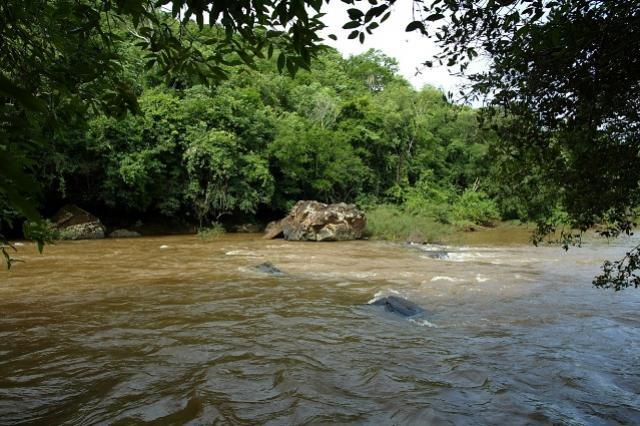Pesca nos rios Ivaí e Piquiri está liberada a partir desta sexta-feira, 26