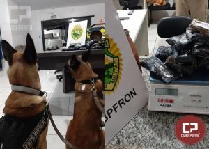 BPFron apreende Haxixe em ônibus na cidade de Ubiratã