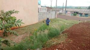 Limpeza em lotes evita proliferação do mosquito da dengue e outros insetos peçonhentos em Ubiratã
