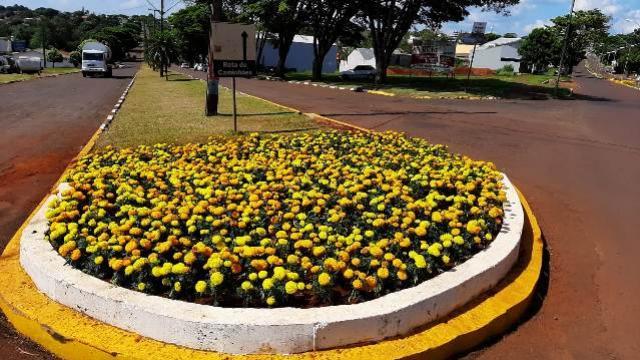 Flores dão um colorido especial no final de ano em Ubiratã