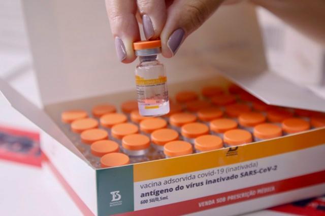 Vacinas já chegaram aos 399 municípios do Paraná