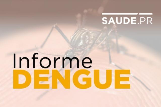 Caso de zika em gestante no Norte do Paraná alerta ainda mais para a importância do combate ao Aedes Aegypti