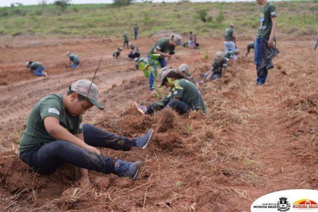 Projeto Semeando o Verde promove plantio de árvore com alunos do 4º ano em Moreira Sales