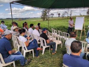 Moreira Sales - 1ª Tarde de Campo sobre Integração Lavoura Pecuária.