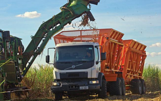 Usina Santa Terezinha de Moreira Sales paralisa as atividades de fábrica por tempo determinado